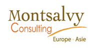 Montsalvy Consulting